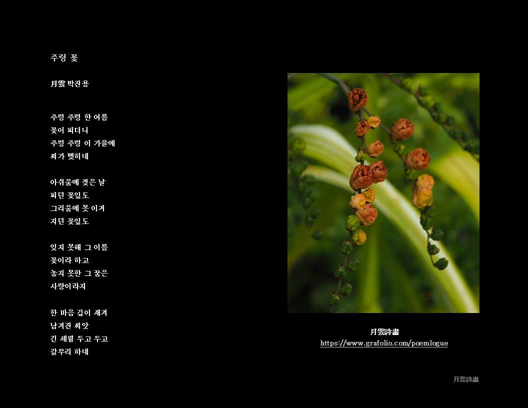 주렁 꽃 BW JPEG 96.jpg