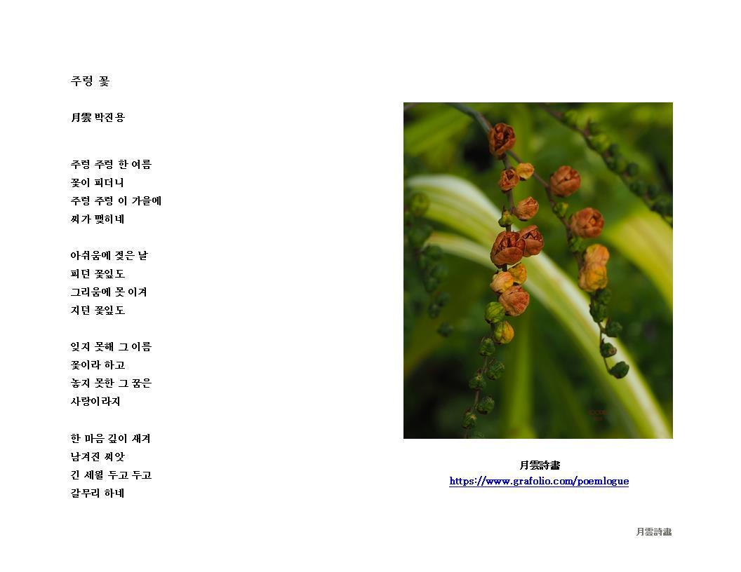 주렁 꽃 WB JPEG 96.jpg